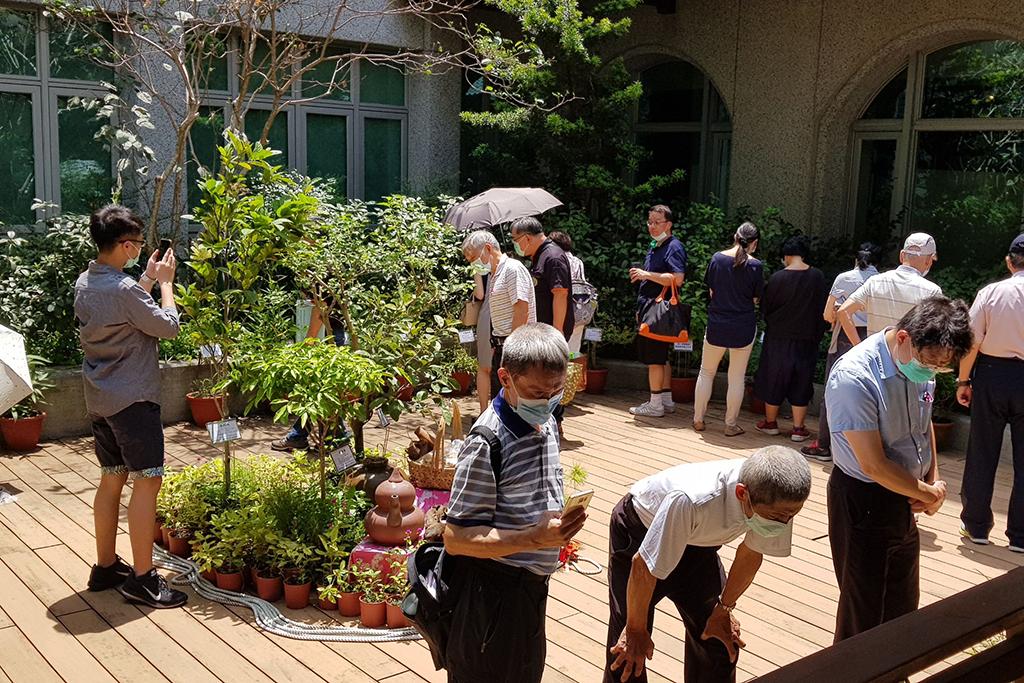與會學員觀賞大坑藥用植物特展,讓研討會更具教學意義。
